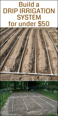 Drip irrigation using PVC Pipe Water Garden, Lawn And Garden, Garden Tips, Farm Gardens, Outdoor Gardens, Veggie Gardens, Permaculture, Outdoor Projects, Garden Projects