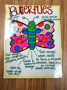 Anchor Chart: Butterflies