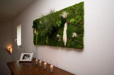 Mur végétal intérieur naturel