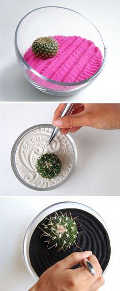 Idea per ridurre lo #stress anche in ufficio: piantina grassa in mini-giardino zen (più o meno)