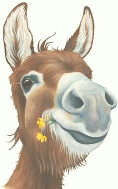 Lizzie Hall. donkey painting laughing canvas print.....laughing at RWers