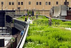 New West Chelsea park uses existing elevated rail line New York Neighborhoods, Houston Street, I Robert, New West, Thing 1, New York City Travel, June 8, High Line, Greenwich Village