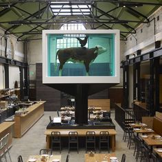 Tramshed, Shoreditch. Love the chicken or steak - cos that's all there is - Cock and Bull