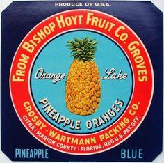 PINEAPPLE ORANGES Vintage Florida Crate label, 'PRODUCE'