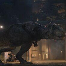 Jurassic World Dinosaurs, Jurassic Park World, Tyrannosaurus Rex, Prehistoric, Monsters, Spider, Witch, Paleo, Characters