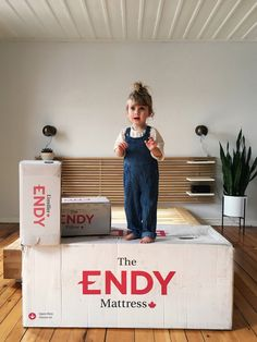 The Endy Mattress Comfort Mattress, Kid Beds, Dream Big, Toy Chest, Storage Chest, Dreams, Pillows, Decoration, Kids