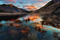 The Silent Hue by Christian Lim