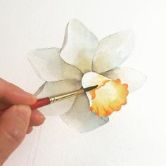 Realistic Flower Drawing, Flower Art Drawing, Flower Drawing Tutorials, Flower Sketches, Flower Pencil Drawings, Easy Flower Drawings, Watercolor Art Lessons, Watercolor Paintings For Beginners, Watercolor Drawing