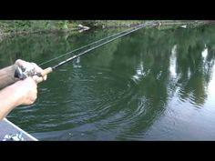#Fishing tips on largemouth bass.          Fishing videos on you tube at #WillCFish