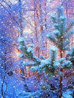 Falling snow in winter forest.