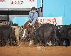 <strong>FURST BASE</strong> - 4YO mare shown by Cody Turner in the Open and Kaitlyn Wimberly in the Non Pro    Sire: <strong>Cats Merada</strong>  Dam: <strong>Keena Pep</strong> (NCHA: $96,006)     <p><em>'Marla' is a beautiful, solid mare that anyone would enjoy having in their barn. Lots of eye appeal in front of a cow! She is an easy keeper and always great to be around. This pretty mare is ready t...