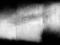 Carbon Sounding 1 (shoal) by Emma McNally. It reminds me of Japanese monochrome painting in general and Hasegawa Tohaku's famous screen painting in particular.