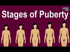 What are the Stages of Puberty in Girls?