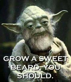 Yoda beard