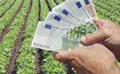 ΕΛΓΑ: Πληρώνονται αύριο ζημιές του 2015 σε φυτική παραγωγή και ζωικό κεφάλαιο   Laconialive.gr - Η ενημερωτική ιστοσελίδα της Λακωνίας, Νέα και ειδήσεις