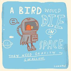 "912 Likes, 23 Comments - Mike Lowery (@mikelowerystudio) on Instagram: ""Space birds!  Today's random fact. #randomillustratedfacts #sketchbook"""
