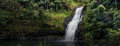 A beautiful waterfall inside a tropical forest. Hawaiian Luau, Hawaiian Islands, Hawaii Flights, Flight Sale, Southwest Airlines, International Flights, Waikiki Beach, Tropical Forest, Beautiful Waterfalls