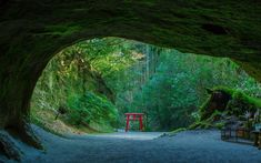Japanese Culture, Japanese Art, Japan Travel, Japan Trip, Kagoshima, Japanese Landscape, Silk Road, Art And Architecture, Meditation