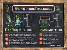 How to store Herbs #savealot #kitchenhack