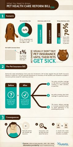 Here is an infographic representation showing Health Care statistics of pets with their veterinary costs, pet health insurance facts, pet insurance bi