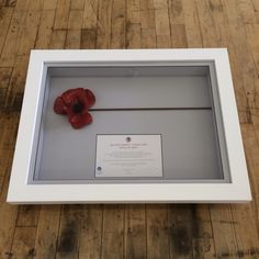 Tower of London Ceramic Poppy. Framed in a chunky white box frame. Ceramic Poppies, White Box Frame, Tower Of London, Box Frames, More Fun, Poppy, Ceramics, Stuff To Buy, Poppies