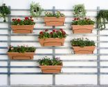 idea para poner en la pared. jardin vertical