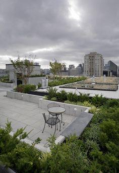 Mosler Lofts modern landscape