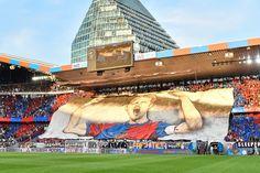 Der Meisterfreitag im bunten Zeitraffer | FC Basel 1893 - Die offizielle Website
