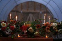 Floret Flower Farm - love this gentle floral design