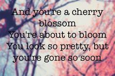 Pin Centuries Fall Out Boy Lyrics Youtube on Pinterest