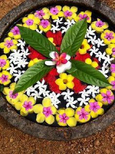 Philipkutty's Farm: fresh flowers arranged outside the door #India