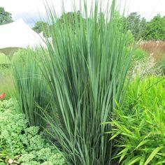 Cache poubelle double en bois lokka naterial naturel 1 for Bouture yucca exterieur