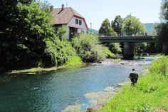 "At ""Česen"" ... Vrhnika city  More info: http://www.urkofishingadventures.com/"