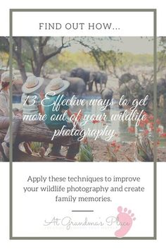 13 effective ways to get more out of your wildlife photography- apply these techniques to improve your wildlife photography and create some wonderful family memories. atgrandmasplace.com