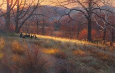 Autumn's Warm Glow - Mark Keathley Wildlife Art, Projects To Try, Glow, Gallery, Paintings, Oil, Warm, Naturaleza, Roof Rack