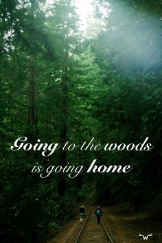 Going to the woods is going home. I love hiking. I miss hiking. Into The Woods Quotes, Walk In The Woods, Nature Quotes, Me Quotes, Forest Quotes, Phrase Cute, Japan Kultur, Hiking Quotes, Travel Quotes