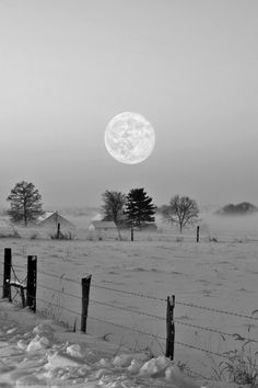 Full moon in the winter wonderland... Beautiful. Absolutely lovely!!