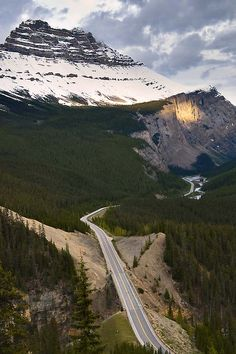 Volgens velen is de Icefields Parkway één van de mooiste autoroutes ter wereld. Deze 230 kilometer lange weg tussen Lake Louise en het dorp Jasper laat alle elementen van de Rocky Mountains zien. Bergen, gletsjers, alpenweiden en natuurlijk de beroemde turkooizen meren.