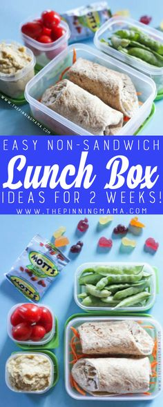 Chicken Gyro Wrap Lunch box idea - Just one of 2 weeks worth of non-sandwich school lunch ideas that are fun, healthy, and easy to make! Grab your lunch bag or bento box and get started!