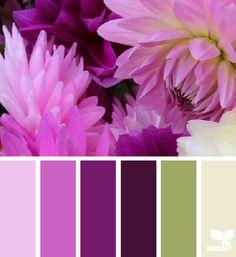 Petaled Hues - http://design-seeds.com/index.php/home/entry/petaled-hues2