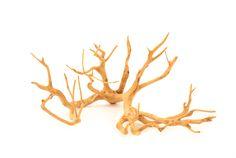 "Tea Tree Branch Sculpture   Organic #sculpture formed by nature   Dia24""-36"" x H24"" #natural #jewelryorganizer #decor #natural"