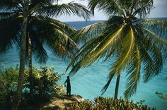 Ocho Rios, Jamaica. Located about a 90-minute car drive from the small resort town of Ocho Rios is Goldeneye, a luxury resort that was once home for Sir Ian Fleming, the famous author behind the James Bond novels. There are plenty of nice beachfront properties to choose from (Jewel Dunn's River Beach Resort and Spa). Climbing up the impressively foam-swept Dunn's River Falls is an area highlight, as is riding the bobsled-style roller coaster at Mystic Mountain, an outdoor adventure…