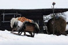 Stefan Bela din Baia Mare Fairy Tales, Snow, Traditional, Outdoor, Switzerland, Beautiful, Heaven, Country, Winter