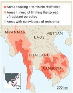 Malaria: Real and present danger - FT.com