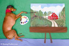 pharaoh hound dog painter