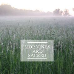 Mornings, dawn, sacred, quotes made by commeunoiseaux