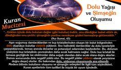 Iman, Charles Darwin, Website, Movie Posters, Film Poster, Billboard, Film Posters