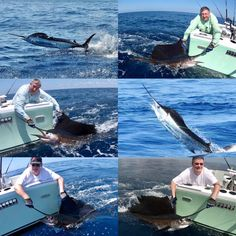 Quepos, Sport Fishing, Costa Rica, England, Sports, Hs Sports, Excercise, English, Sport