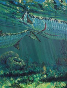 Jorge Martinez, Florida Fish, Sea Life Art, Fish Art, Vintage Travel Posters, Kohls, Underwater, Miami, Fishing