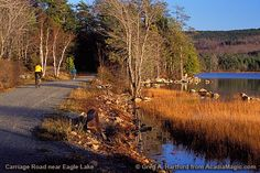 Acadia National Park--another fun place to camp and bike and hike and run.